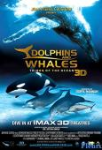 Dolphins and Whales 3D: Tribes of the Ocean full movie