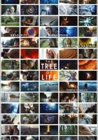 The Tree of Life full movie