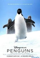 Penguins full movie