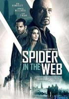 Spider in the Web full movie