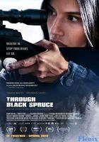 Through Black Spruce full movie
