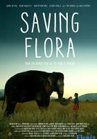 Saving Flora full movie