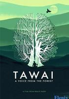 Tawai: A Voice from the Forest full movie