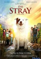 The Stray full movie