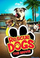 Rescue Dogs full movie