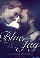 Blue Jay full movie