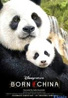 Born in China full movie