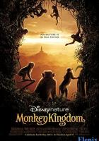 Monkey Kingdom full movie