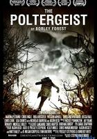 The Poltergeist of Borley Forest full movie