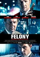 Felony full movie