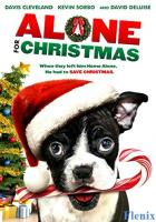 Alone for Christmas full movie