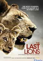 The Last Lions full movie