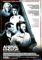 Animal Kingdom full movie