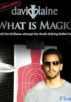David Blaine: What Is Magic? full movie