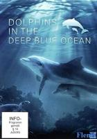 Dolphins in the Deep Blue Ocean full movie