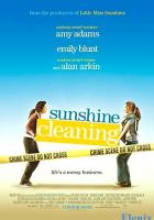 Sunshine Cleaning full movie