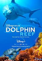 Dolphin Reef full movie