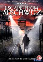 The Escape from Auschwitz full movie