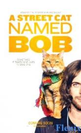 A Street Cat Named Bob full movie