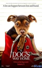 A Dog's Way Home full movie