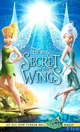 Secret of the Wings poster