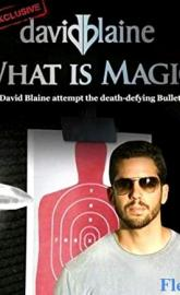 David Blaine: What Is Magic? poster