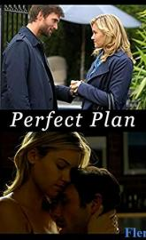 Perfect Plan poster