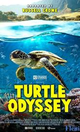 Turtle Odyssey poster