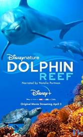 Dolphin Reef poster