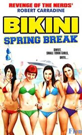 Bikini Spring Break poster