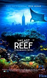 The Last Reef 3D full movie